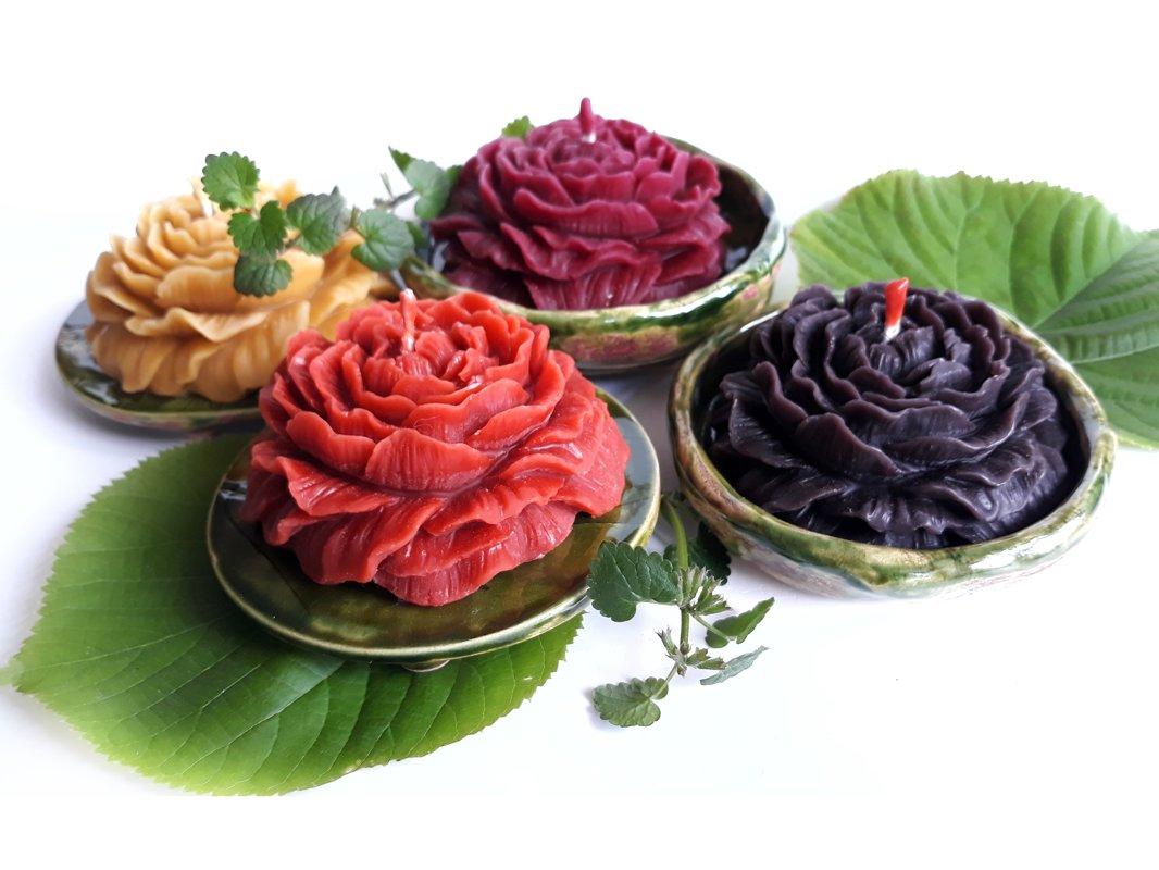 Lielās rozes